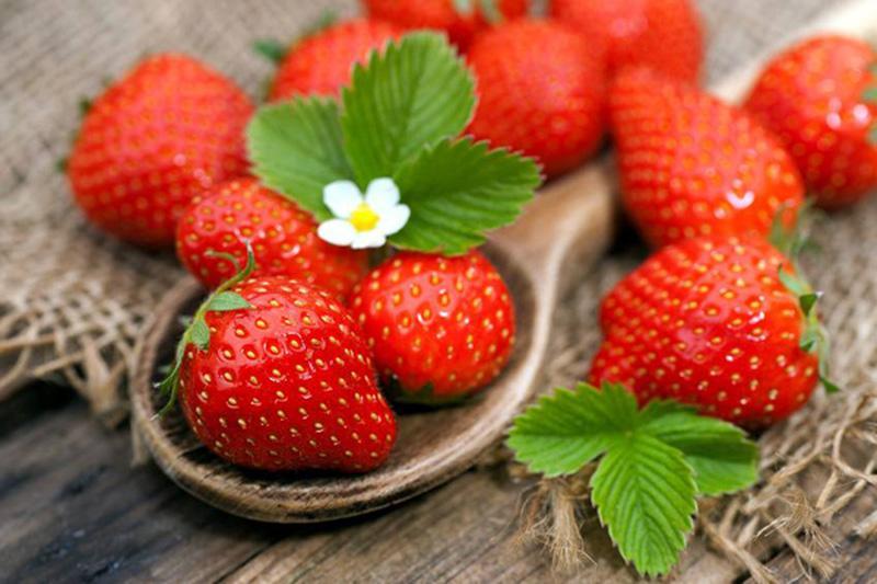 Loại hoa quả nào có nhiều Vitamin C nhất?